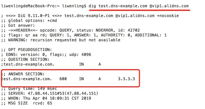 指定权威DNS