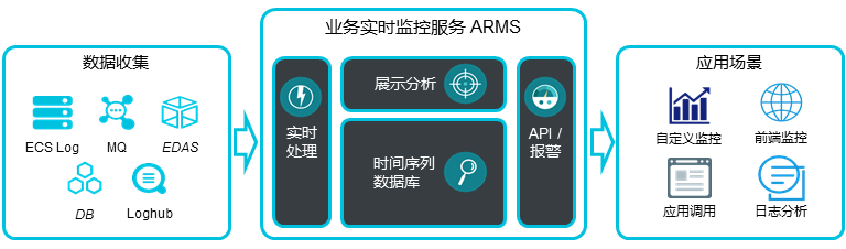 ARMS Workflow