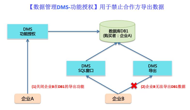 数据管理DMS-功能授权-禁止导出