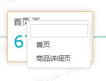 SwitchPresentPage