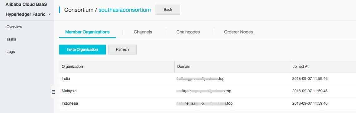 Consortium blockchain details